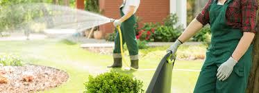 Comment entretenir un jardin sans beaucoup d'effort